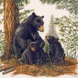 Black Bear & Cubs 14