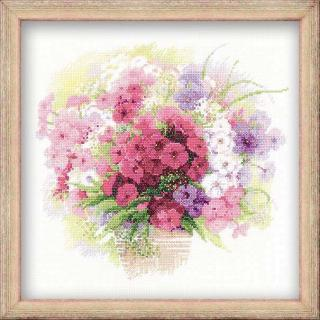Watercolour Phlox