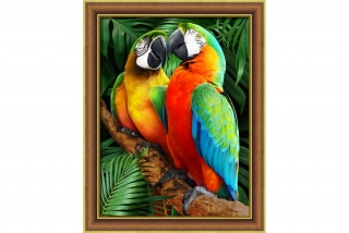 MACAWS IN THE JUGLE