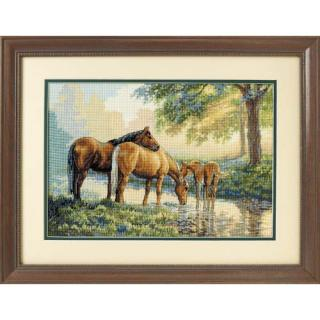 Horses By A Stream